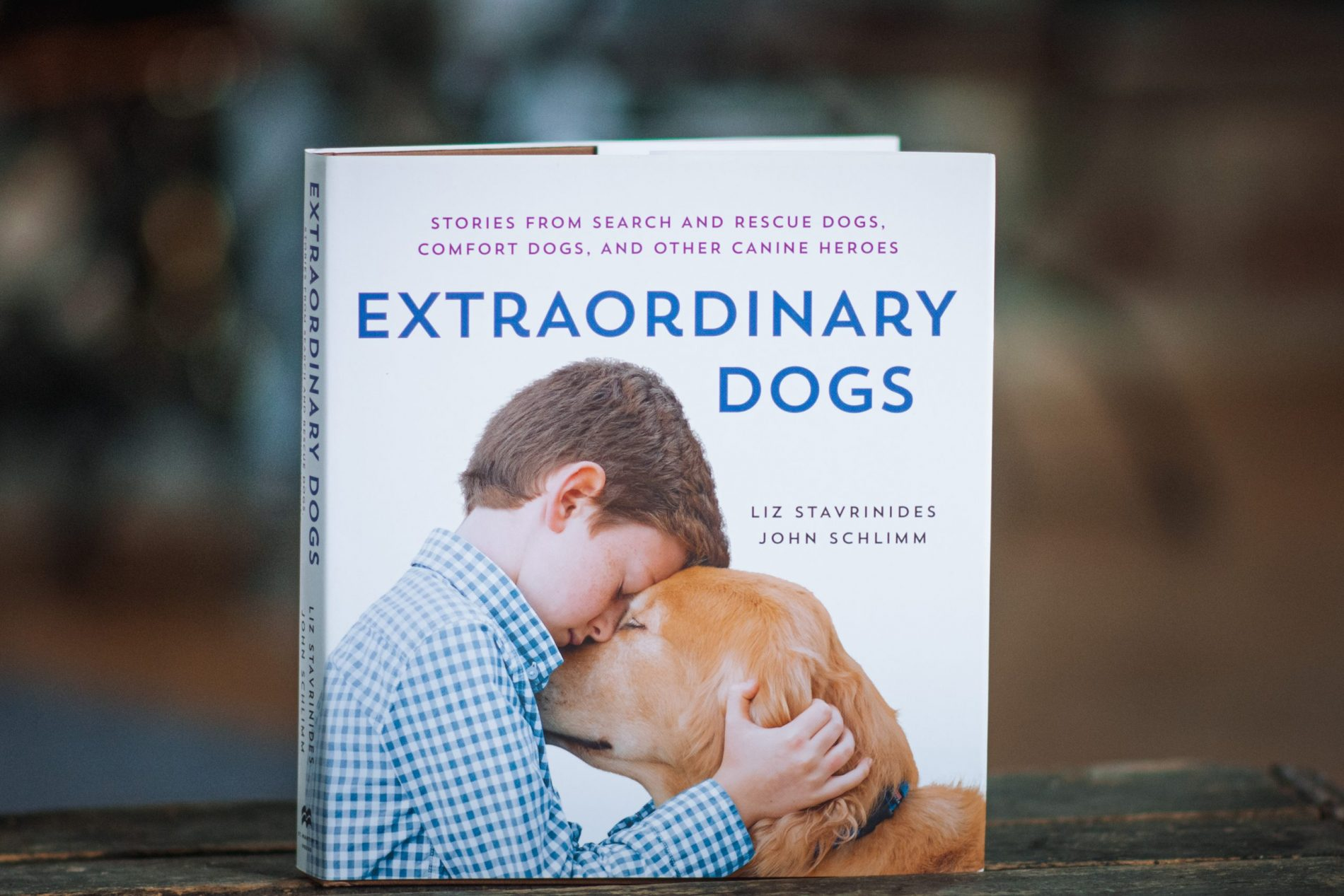 cover of Extraordinary Dogs book